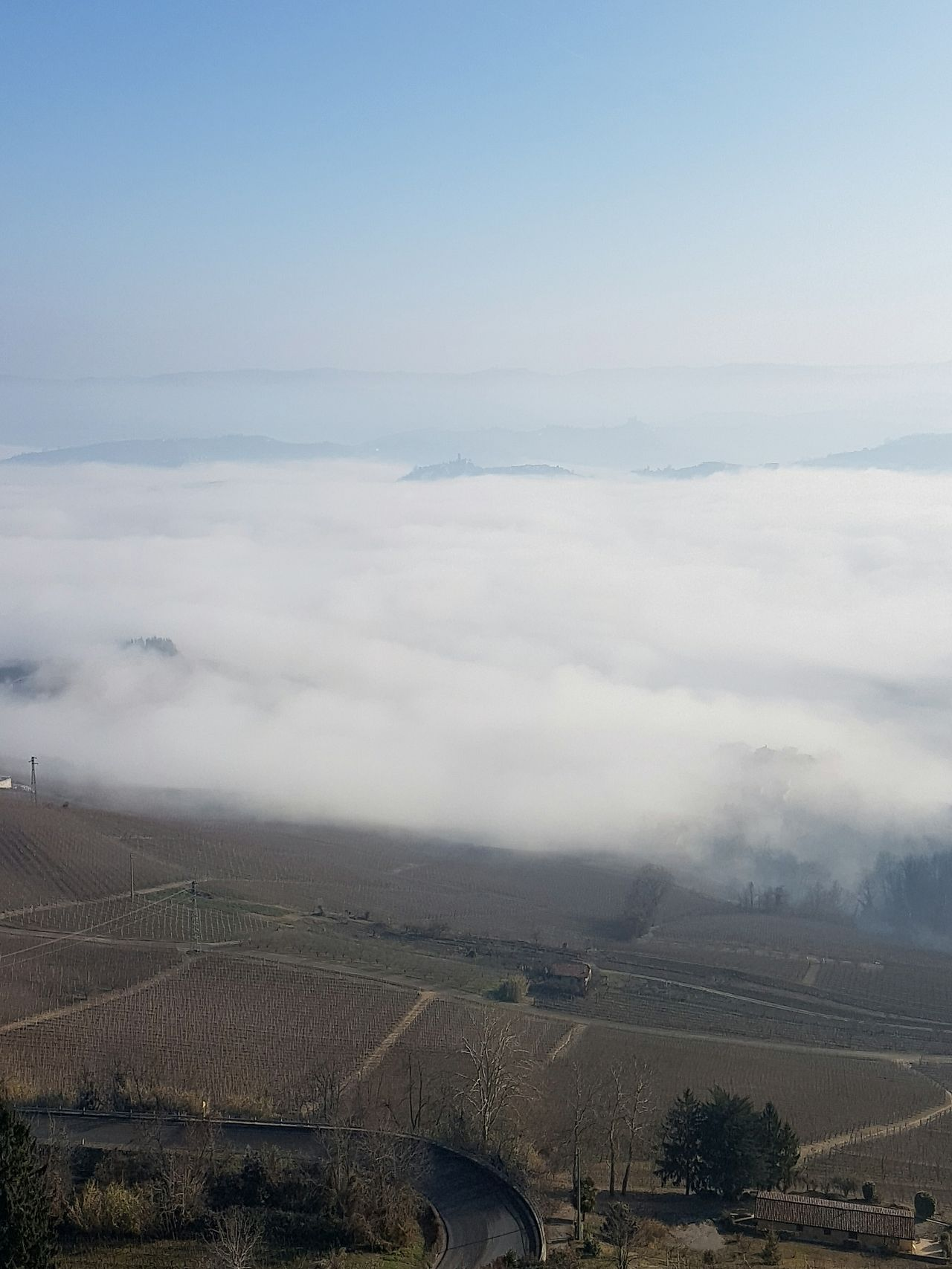 Aerial View Sky Outdoors Cloud - Sky Landscape No People Scenics Nature Day Atmospheric Mood Autumn La Morra Langhe Piedmont Trees In The Fog Foggy Weather Foggy Day Tranquility Nature Beauty In Nature Flying Fog Texture And Surfaces Agriculture Travel Destinations EyeEmNewHere Miles Away