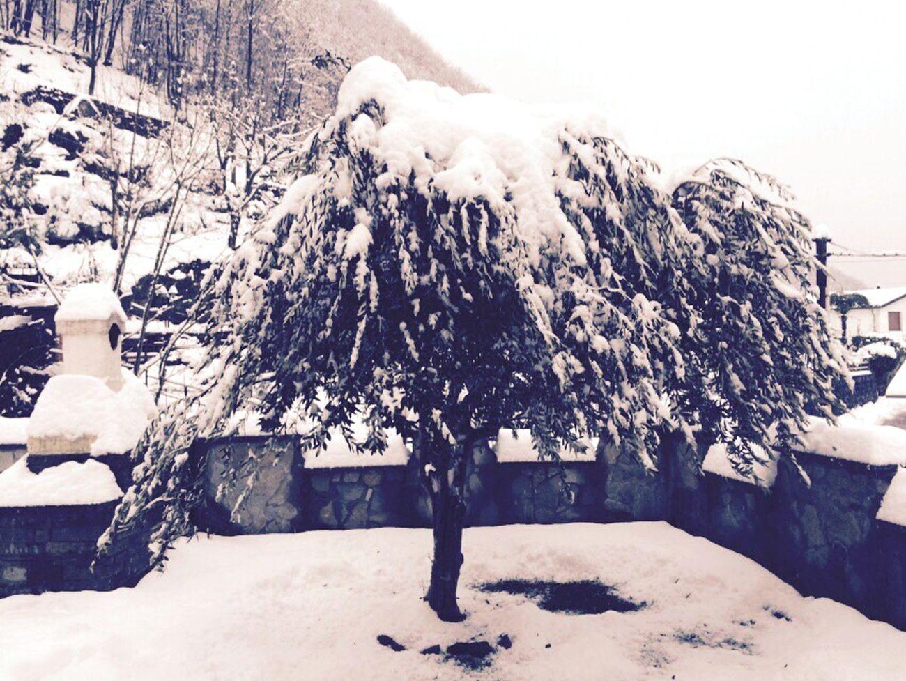 Maccagno Sotto La Neve.