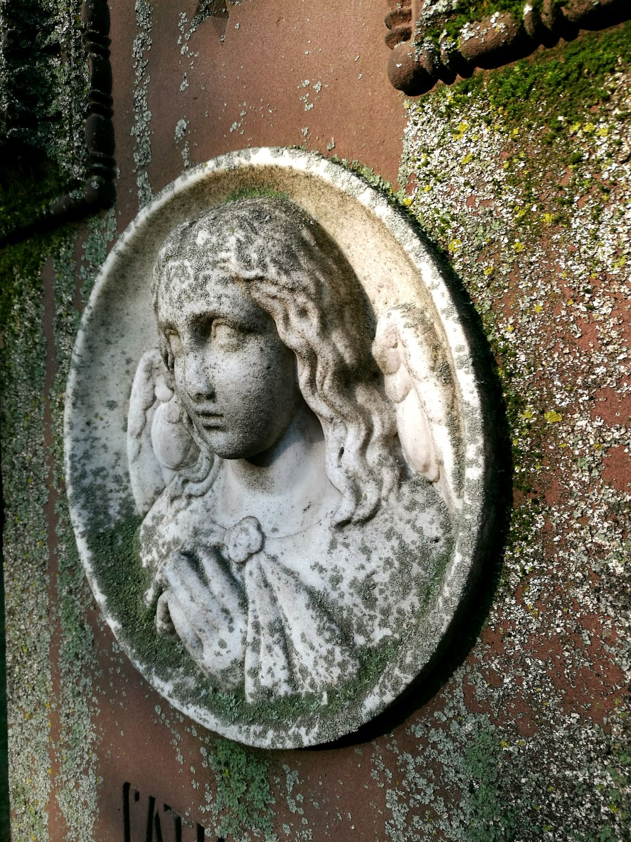 Little carara angel. The very old grave of an 16 year old Girl. History Historical Monuments Hoppenlaufriedhof Stuttgart Old Memories Gravestone Photography Gravestone Graves Gravestones Grave Graveyard