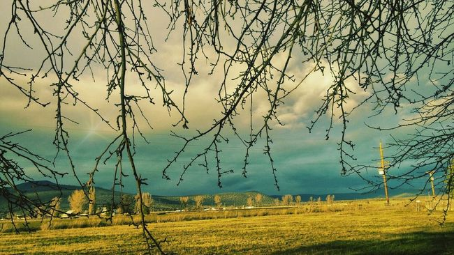 Relaxing Enjoying Life Love Country Living Outside Photography Love To Take Photos ❤ Eyemphotos EyeMe Best Shot - Landscape Amazing_captures Eyem Gallery Eyem Best Shots Eyemphotography Amazing View Stormy Skies Beautiful Sky Storm Cloud Stormy Weather Green Green Green!