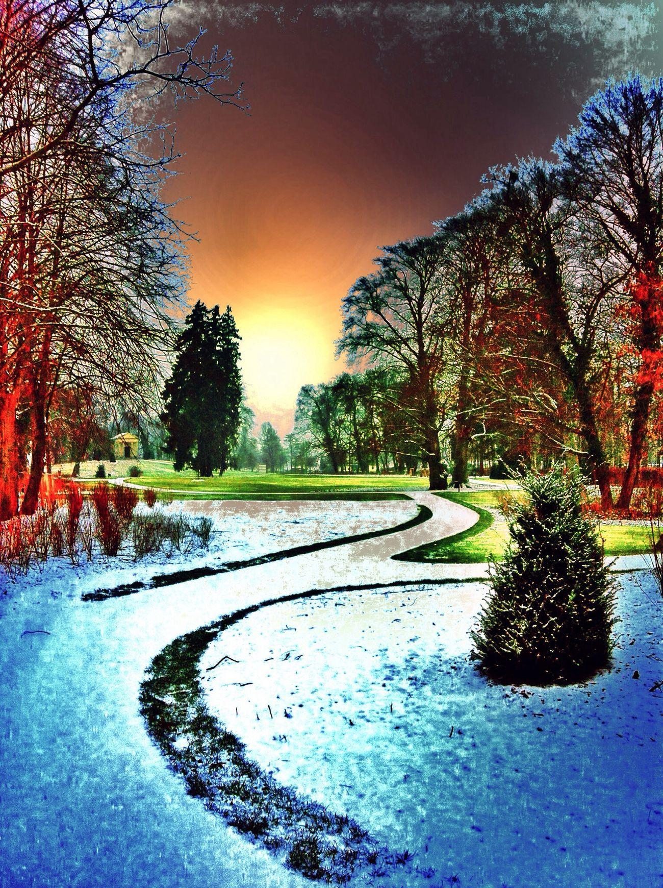 Farbenspaß Parkweg Abend  Baumkult(ur)