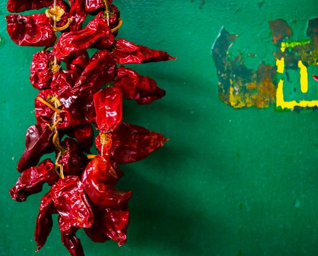 Art Is Everywhere Pepper Red Hanging Eyeemphotography Food Photoshoot Foodphotography Market Bulgaria Eye4photography  EyeEmbestshots EyeEm My Photography Chillies Red Red No People Close-up Celebration Studio Shot Indoors  Day