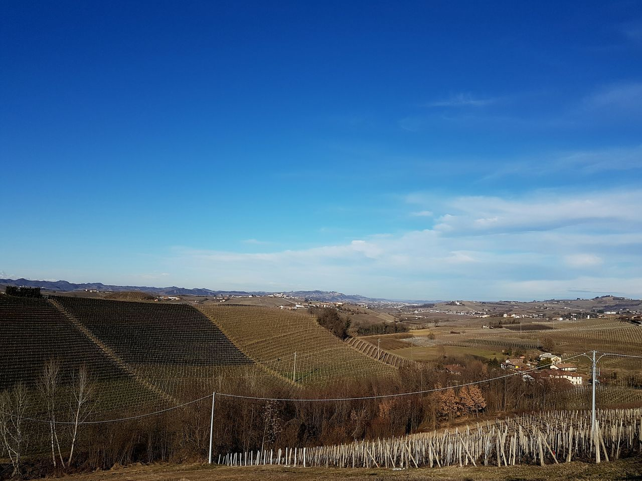 Blue Sky Rural Scene Agriculture Growth Nature Clear Sky Environmental Conservation Scenics Langhe Piedmont Italy Tranquility Outdoors Landscape Vineyards In Winter Barolo Wineyards