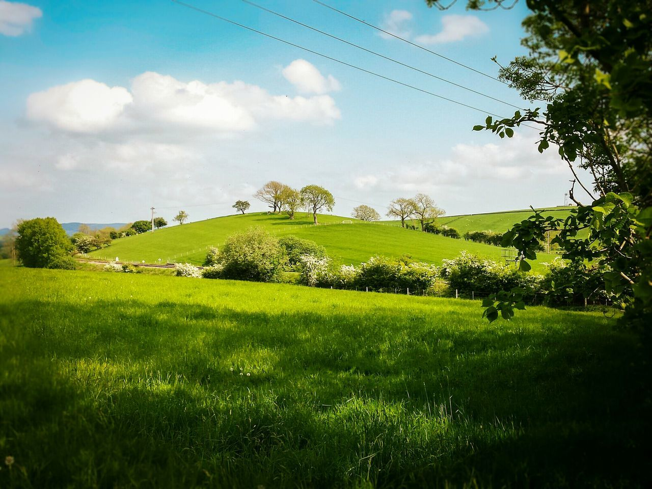 Springtime Spring 2016 Spring Nature Nature Photography View POV Gargrave Yorkshire Dales Light And Shadow Yorkshire North Yorkshire Hillside Hills Hill Fieldscape Fields Field Grass Lush Green Landscapes Landscape The Great Outdoors - 2016 EyeEm Awards Trees
