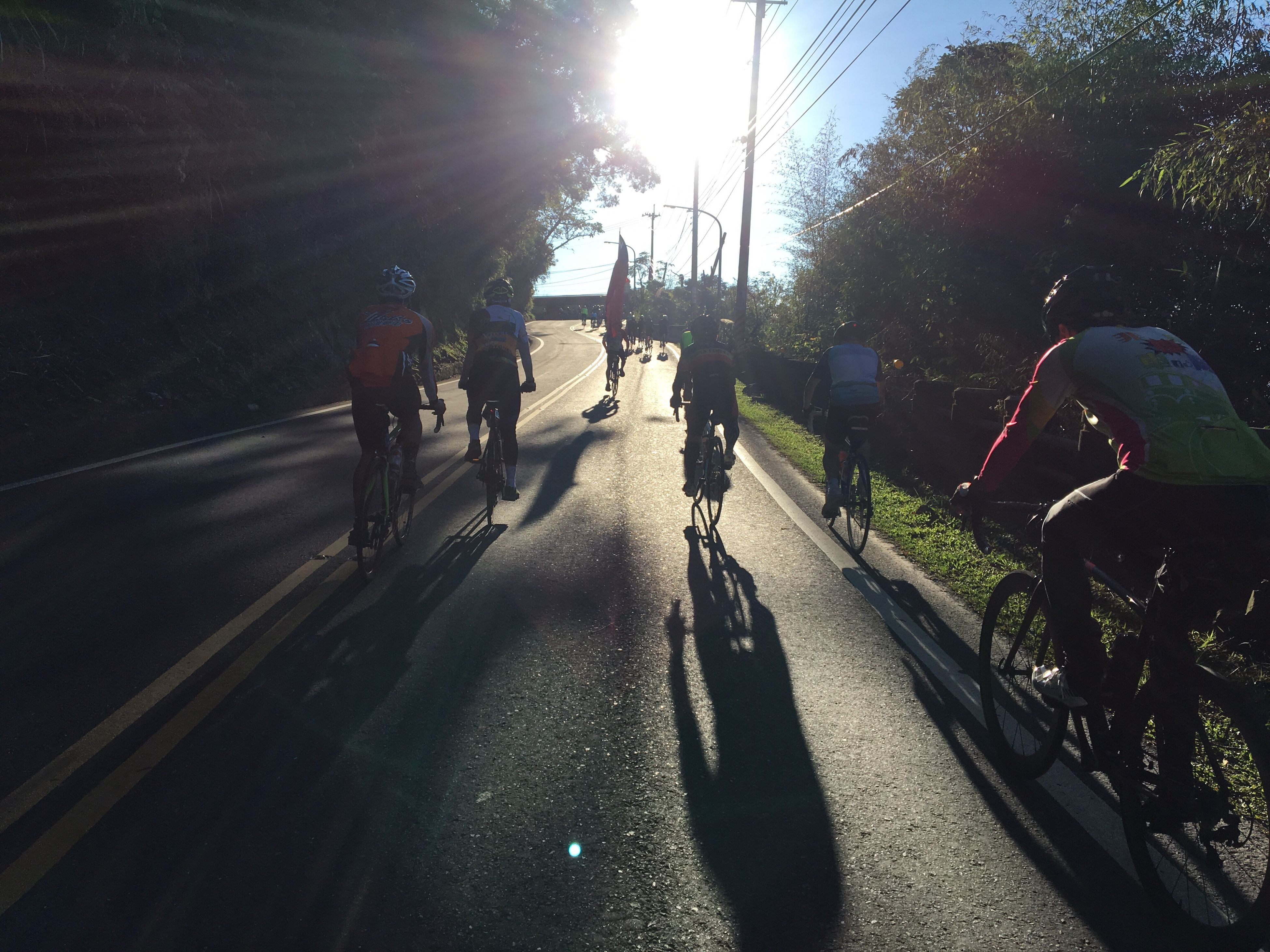 sunlight, shadow, real people, bicycle, tree, adults only, transportation, healthy lifestyle, outdoors, the way forward, only men, men, lifestyles, people, adult, full length, sports race, sunbeam, togetherness, day, nature, sky, sportsman, young adult, sports track