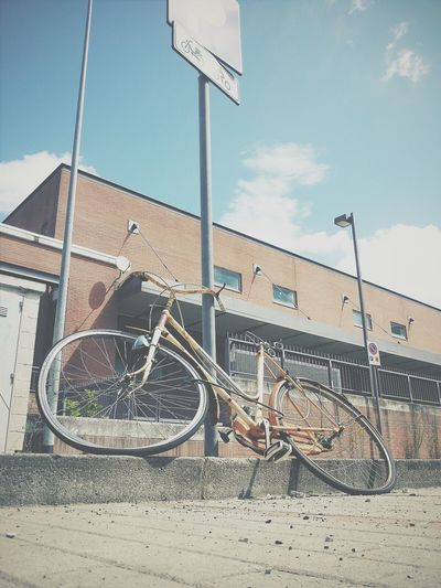 Bycicle Vscocam VSCO