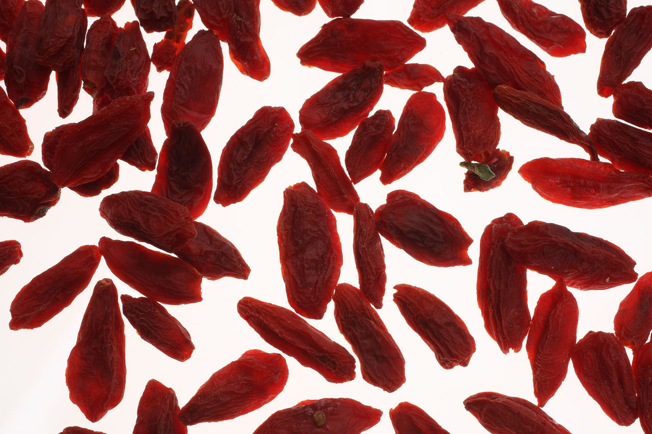 Goji berries, a fruit berry and medicinal plant Close-up Day Food Food And Drink Freshness Fruits Goji Gojiberries Gojiberry Healthy Eating Large Group Of Objects Medicinal Plant Nature No People Red White Background