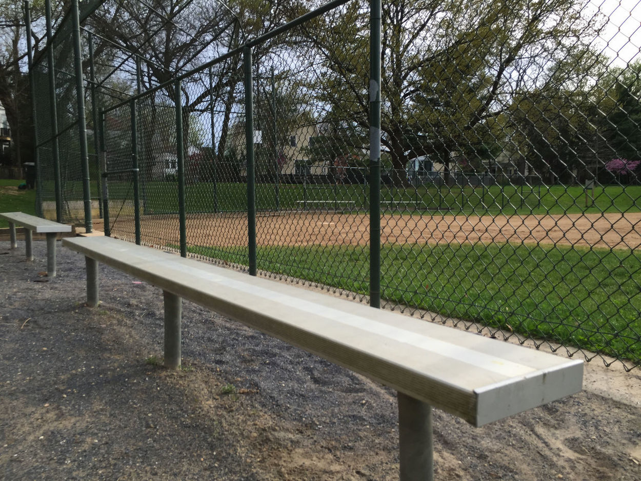 Baseball Baseball Bench Baseball Diamond Bench Day Fence Field Grass Grassy Green Color Growth Landscape Metal Nature Outdoors Park - Man Made Space Protection Shadow Sunlight Tranquil Scene Tranquility Tree Tree Trunk