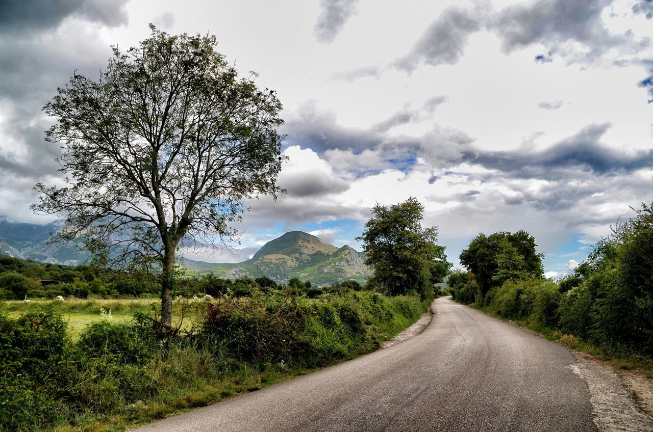 road, tree, cloud - sky, the way forward, nature, sky, landscape, mountain, transportation, scenics, winding road, day, tranquil scene, tranquility, no people, outdoors, beauty in nature, grass, mountain range, rural scene
