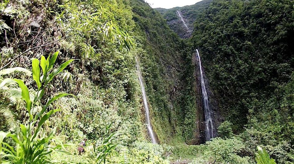 Les cascades de Grand Etang Reunion Island ReunionIsland_allshots Waterfall Iledelareunion Nature