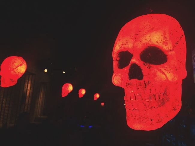 Night Red Illuminated Human Representation Dark Red Color Spooky Atmosphere Spooky Halloween_Collection Halloween Creepy Skull Skulls