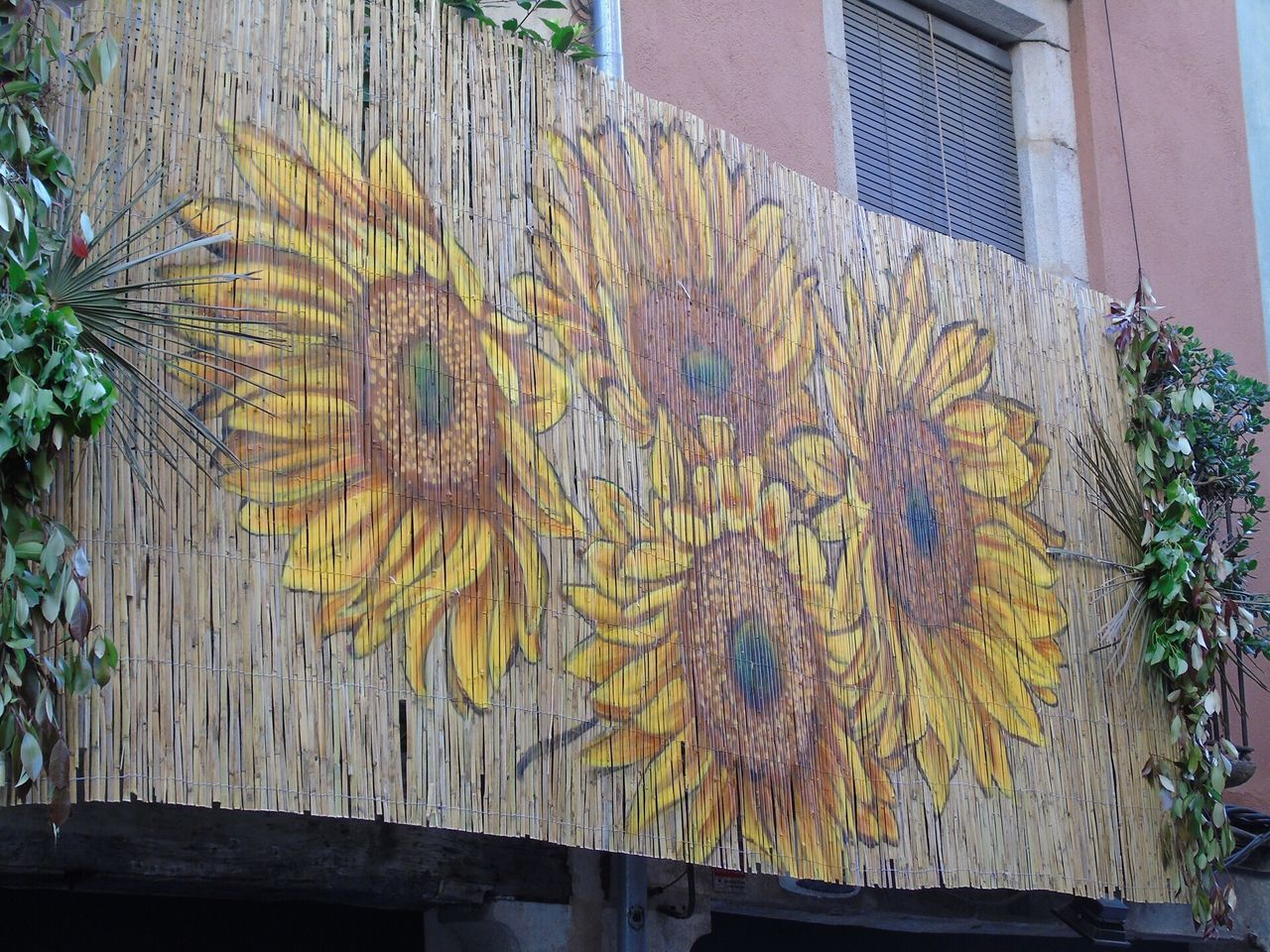 Building Exterior Built Structure Architecture Outdoors Yellow Day Wood - Material No People Multi Colored Plant Flower Close-up Tree Nature Girona Girona Temps De Flors 2017 Gironamenamora