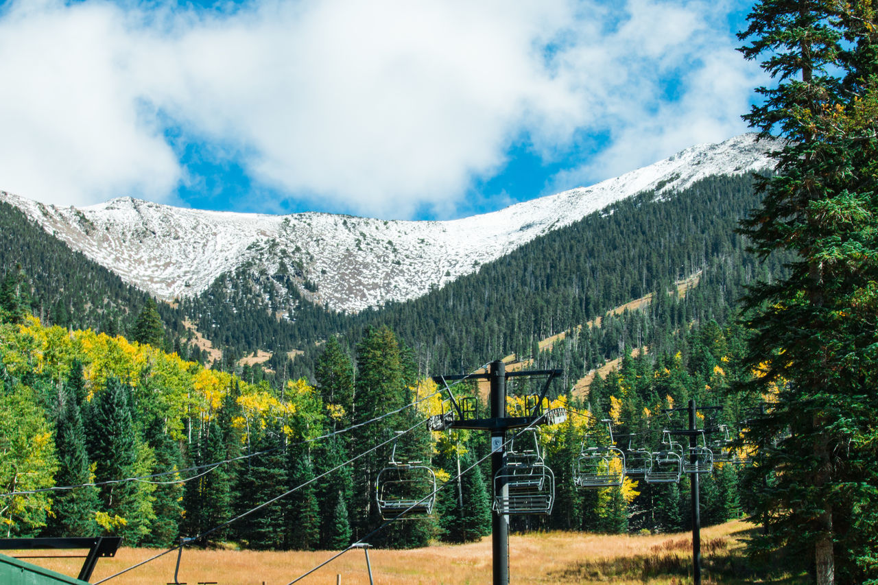 Arizona Snowbowl in summertime in Flagstaff, Arizona, United states. Altitude; Area; Arizona; Background; Beautiful; Blue; Chairlift; Change; Cold; Color; Day; Elevation; Field; Flagstaff; Forest; Frost; Green; Highhorizon; Holiday; Humphreys; Jerome; Landscape; Meedow; Mountain; Nature; Nount; Outdoor; Park; Pine; Prairie