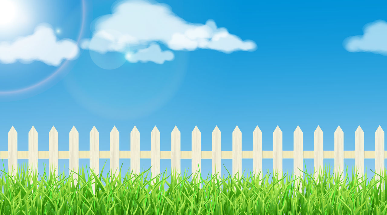 grass, green color, outdoors, field, no people, day, nature, sky, close-up