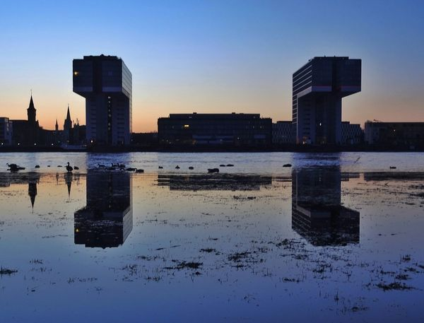 Water Reflections Reflection Reflections Reflection_collection Urban Landscape Urban Geometry Geometric Shapes Rule Of Thirds Reflected Glory The Architect - 2015 EyeEm Awards Seeing The Sights Rheinauhafen Cologne Köln