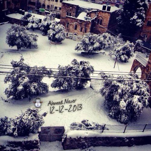 Snow ❄ ❤️