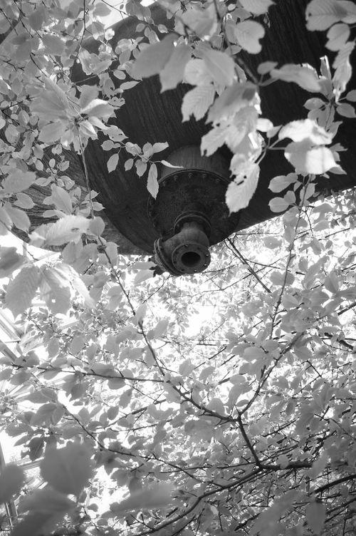 * ease of gravity * Hans Guck In Die Luft Black And White Blancoynegro Industrial