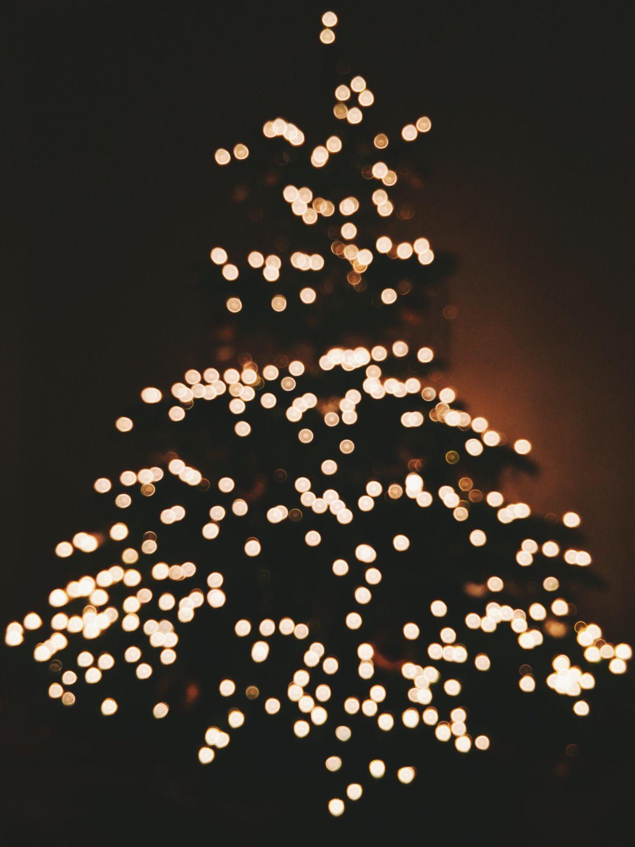 Christmas Christmas Tree Merry Christmas! Bokeh
