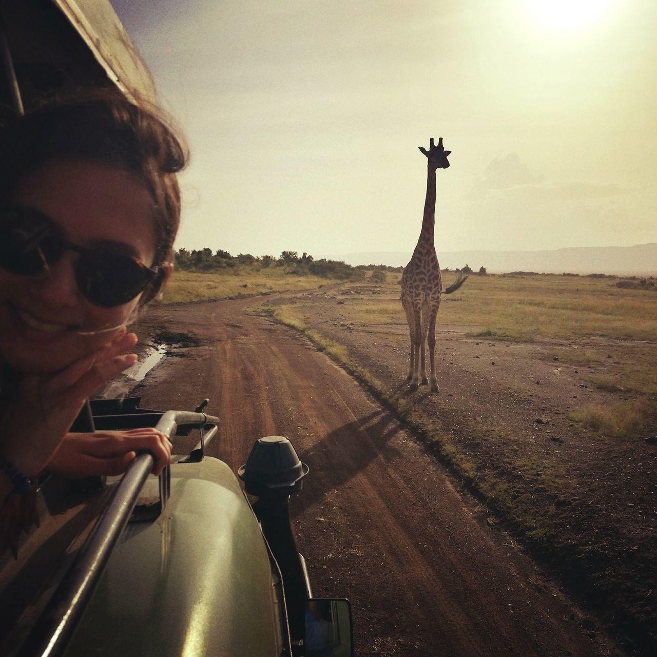 Rural Scene Landscape Outdoors Day Sky Nature Mammal Safari Animals Travel Giraffe