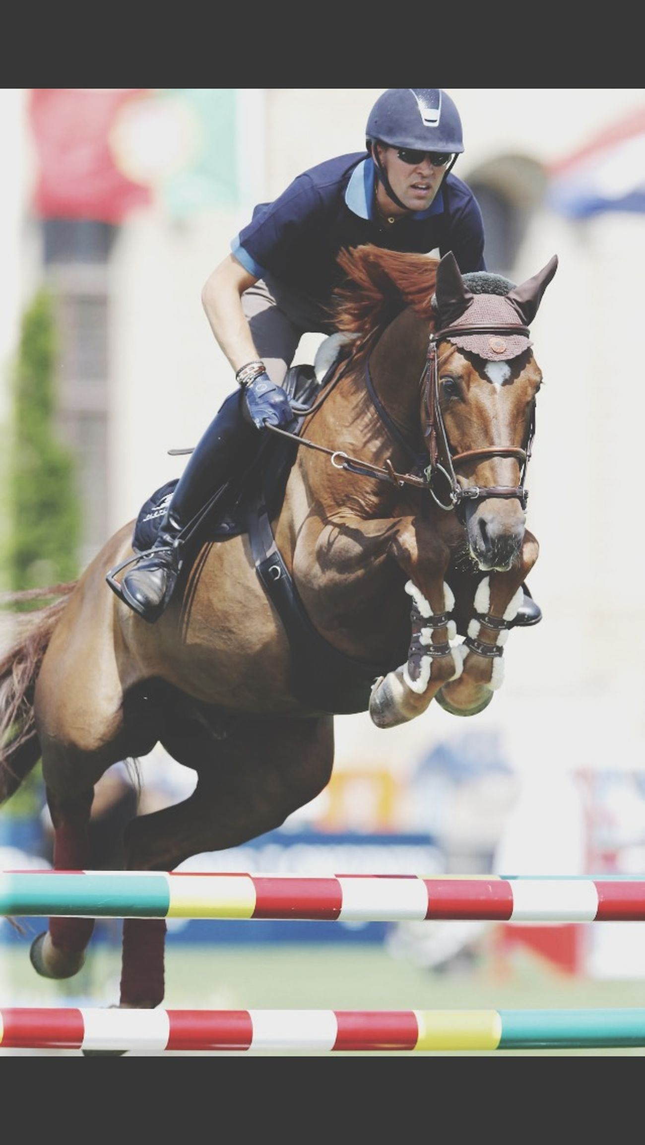 Simon Delestre au Jumping Chantilly juste en face de nous 👌🏻😏😍 Chantilly2015