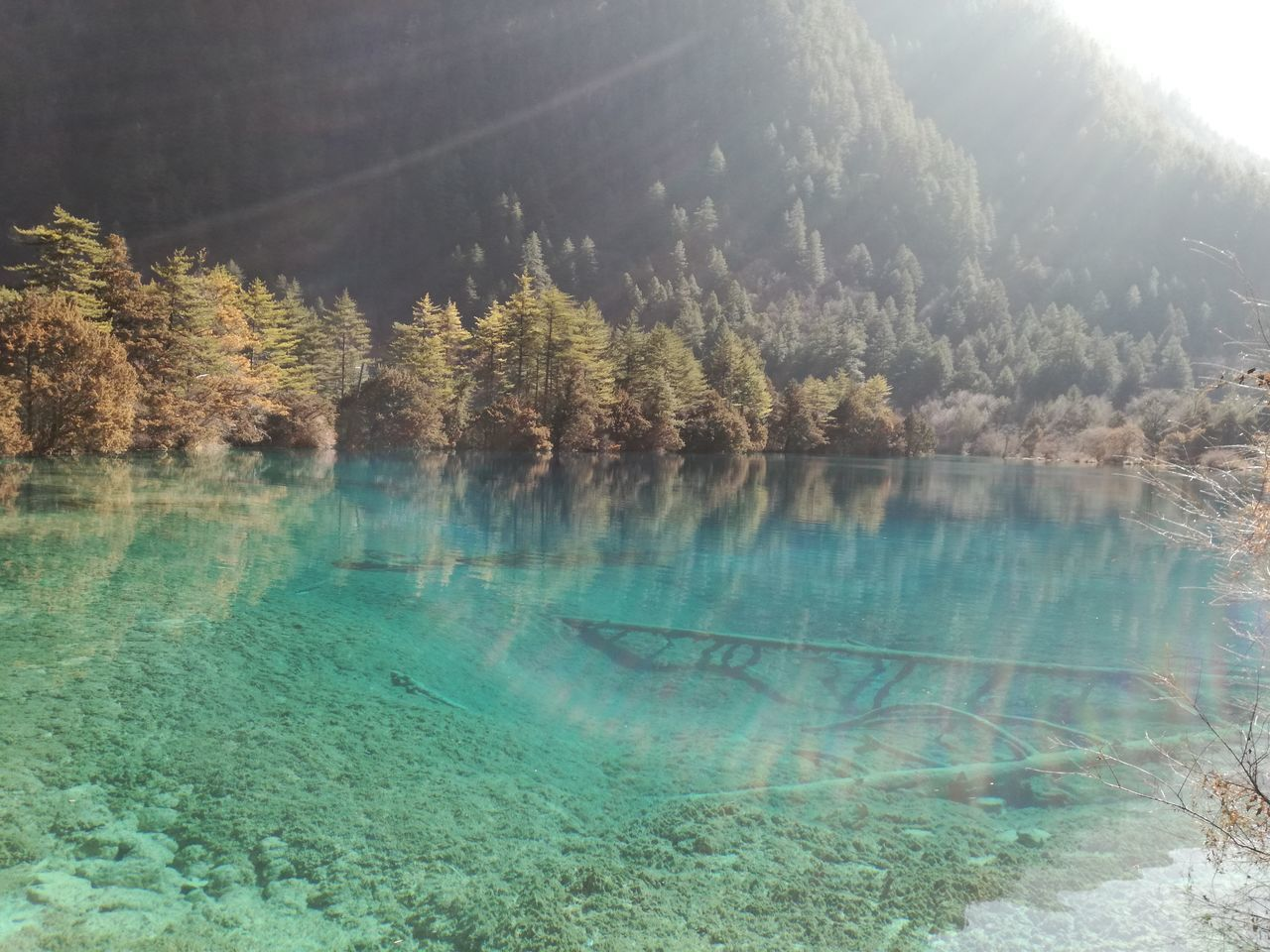 Water Lake Nature Landscape Beauty In Nature Scenics Outdoors Valley River Travel Destinations Vacations China Jiuzhaigou Natural Reserve Sichuan Province EyeEmNewHere