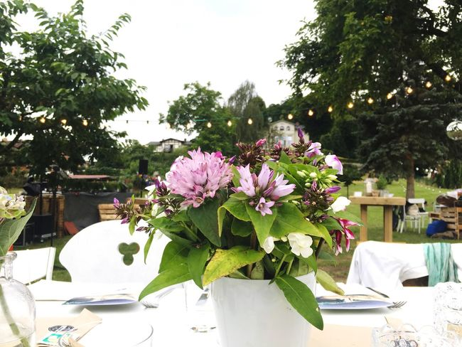 Wedding Outdoor Festival Eat Supper Nature