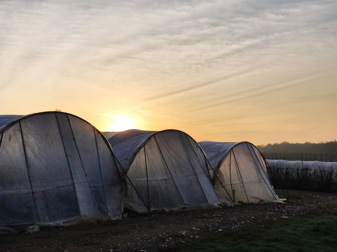 Sunrise over Tuesley Farm in Godalming, Surrey. Godalming Sky Sunset Built Structure Outdoors Nature No People Architecture Day Rural Surrey Surrey Hills Uk Sunrise_sunsets_aroundworld Sunrise Beauty In Nature Polytunnels Polytunnel Silhouettes Silhouette Landscape_Collection Farmland Nature Farm Farming