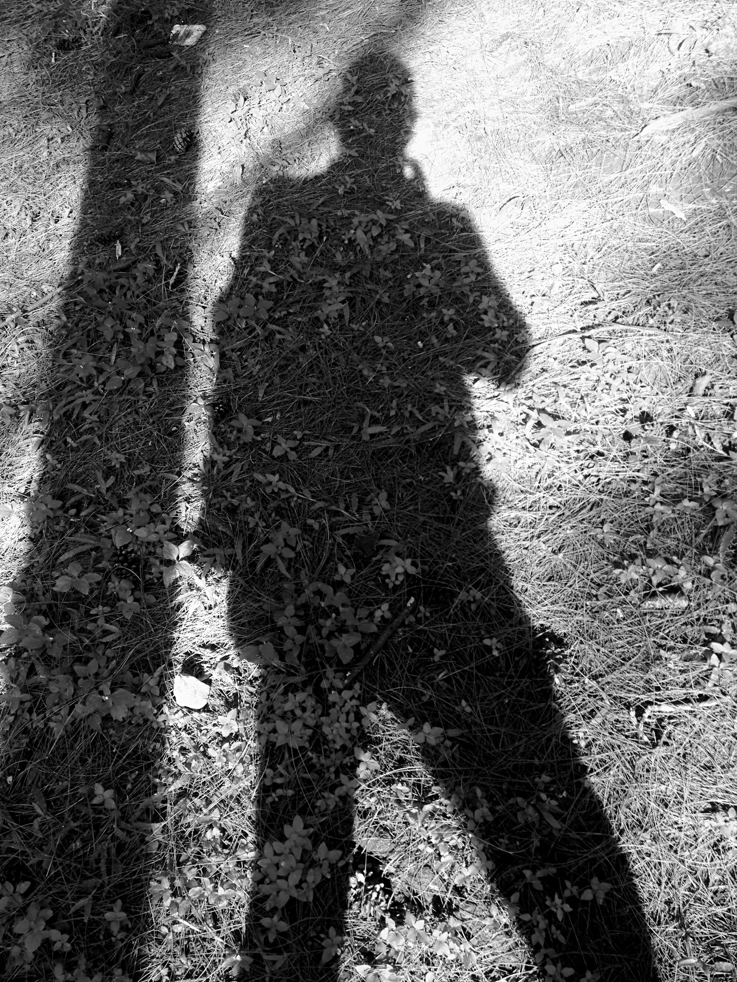 shadow, focus on shadow, street, high angle view, sunlight, unrecognizable person, road, lifestyles, outdoors, men, leisure activity, day, silhouette, asphalt, human representation, outline, road marking, standing