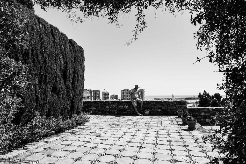 Black And White Castello Di Gibralfaro Man Resting Nature Nice View Uomo A Riposo Wall
