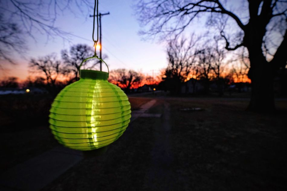 Visual Journal March 2017 Nebraska Bare Tree Chinese Lantern Close-up Color Photography Everyday Lives EyeEm Gallery Focus On Foreground Front Yard View Fujifilm_xseries Green Lantern  Hanging Illuminated MidWest Nebraska Night No People Outdoors Photo Diary Spring In Your Step Story Of My Life Storytelling Streelight Sunset Sunset_collection Visual Journal