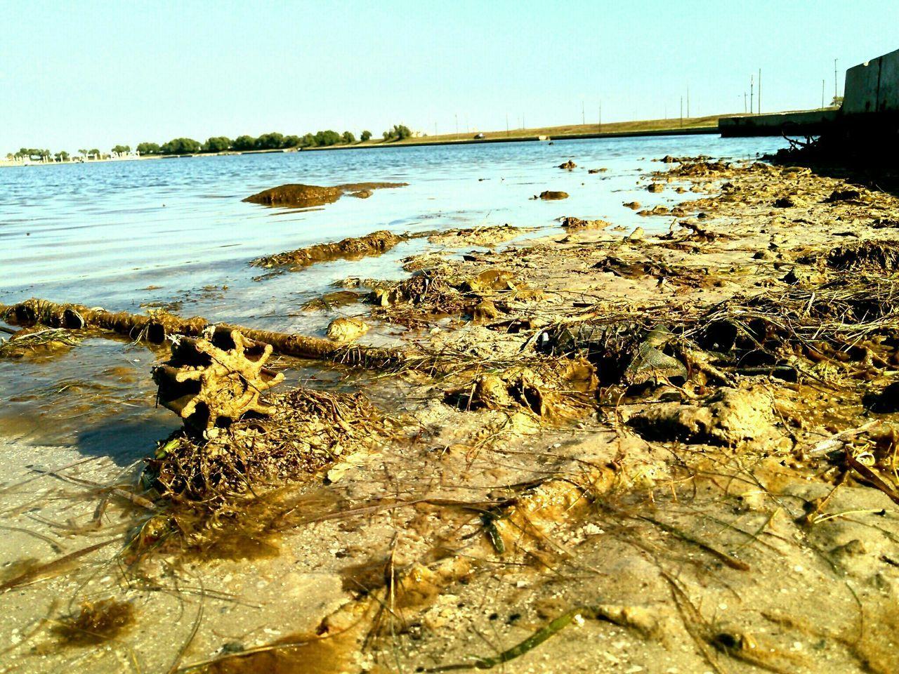 Dirty Riverbank Against Sky