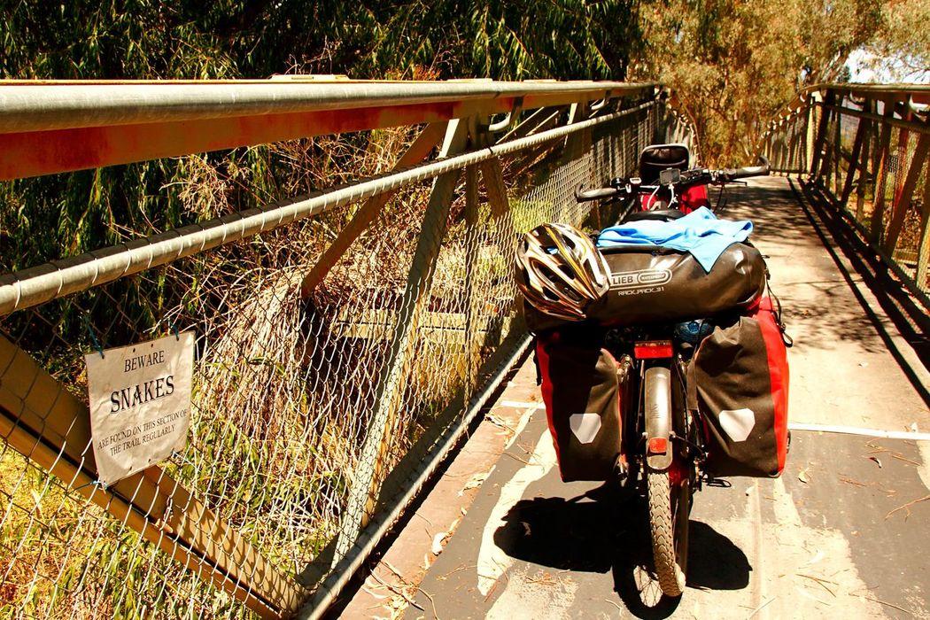 Celebrate Your Ride Bike Bike Life Biketour Cycling Trip  Australia Cyclinglife Cyclingholiday CyclingTour Cyclephotography Biketrip Bicycle Trip Biketouring Bikesaroundtheworld Bike Riding Railtrails Railtrail Bikepath Bikelife Bike Week Bike Trip