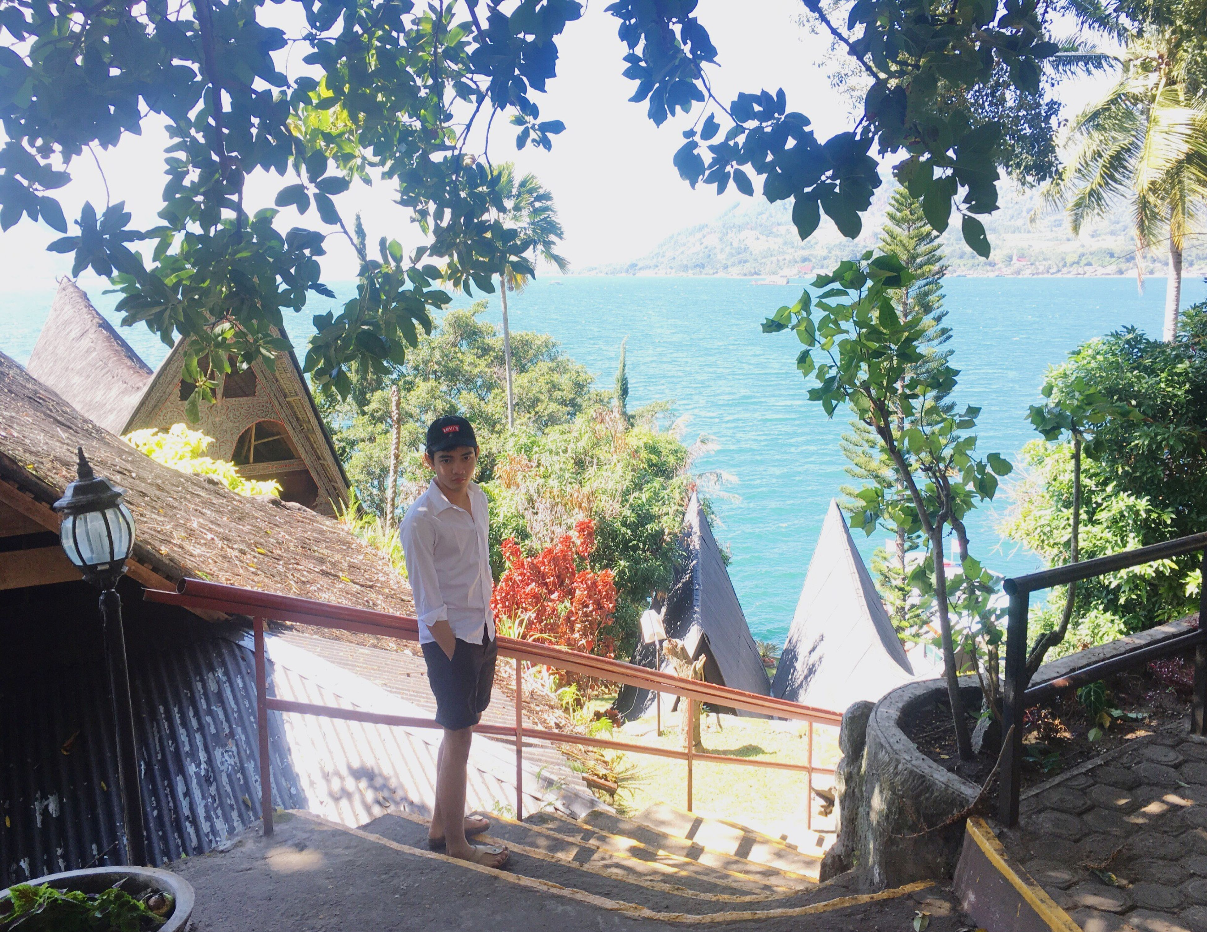 tree, sea, water, rear view, full length, railing, casual clothing, tranquil scene, day, plant, vacations, tranquility, branch, scenics, nature, growth, outdoors, tourism, remote, solitude, green color
