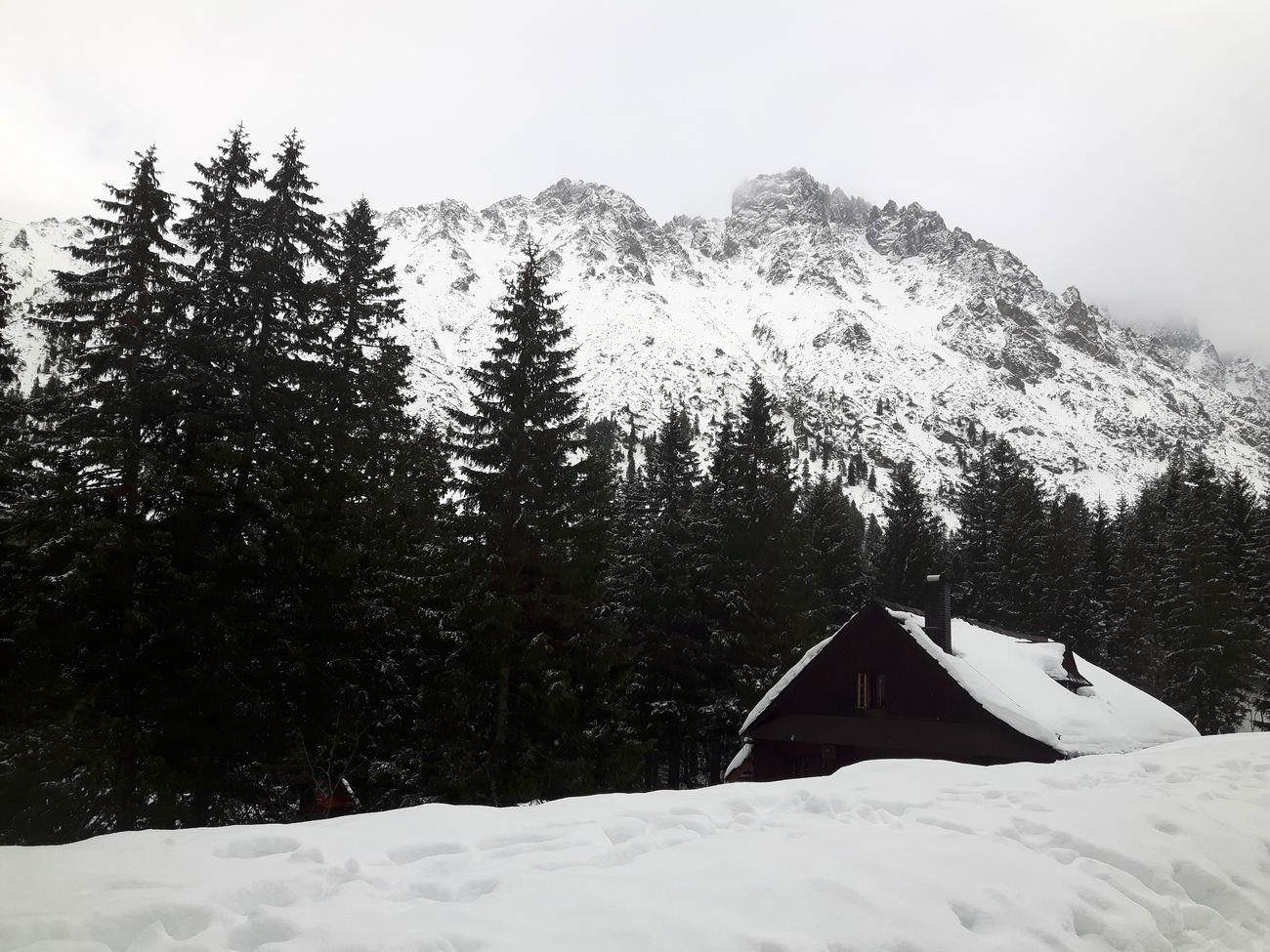 Hello World Winter Snow Tatry Mountains Morskieoko Cottage Forest Photography Nature