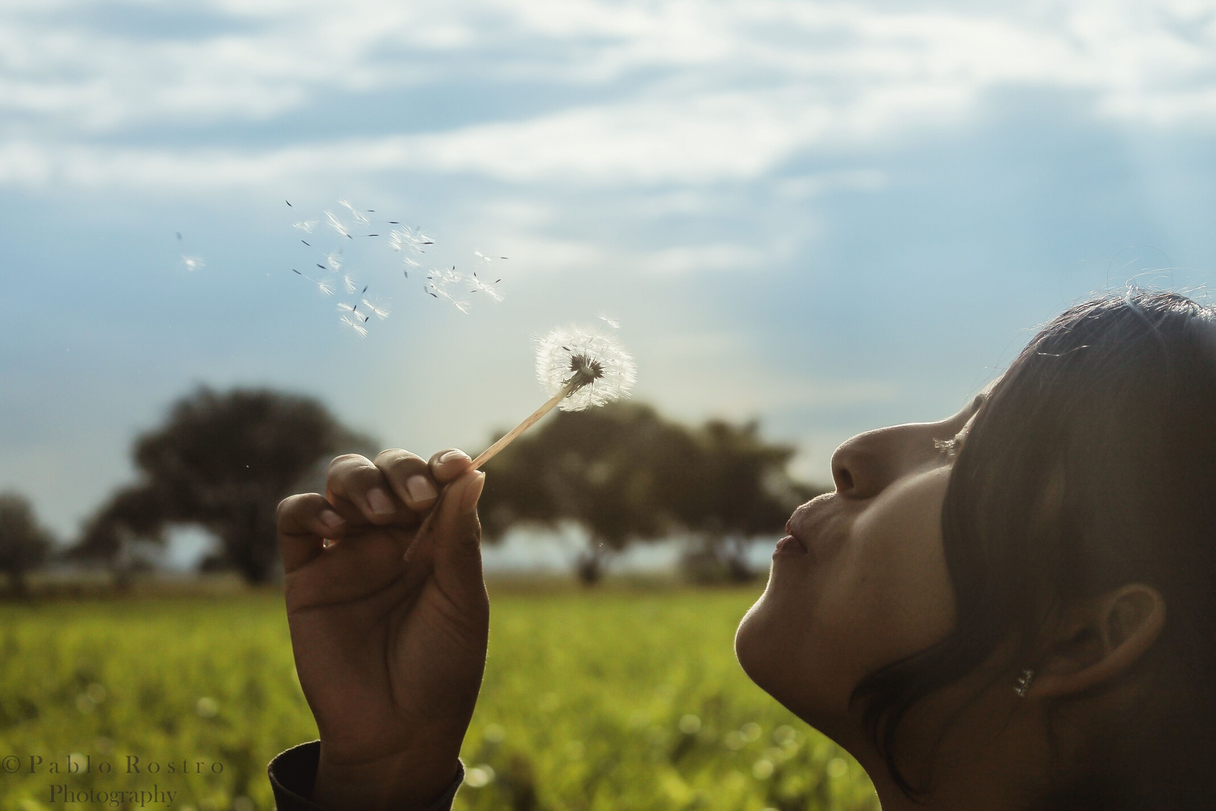 lifestyles, leisure activity, sky, focus on foreground, men, person, holding, field, rear view, waist up, headshot, tree, nature, cloud - sky, bubble, outdoors, day