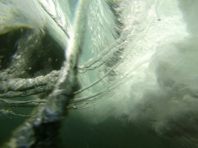 9/8/14 Water World  Water_collection Surf Photography EyeEm_crew Surfing The Pursuit Of Happiness Under The Sea Eat Sleep Surf Gopro Wars Gopronation