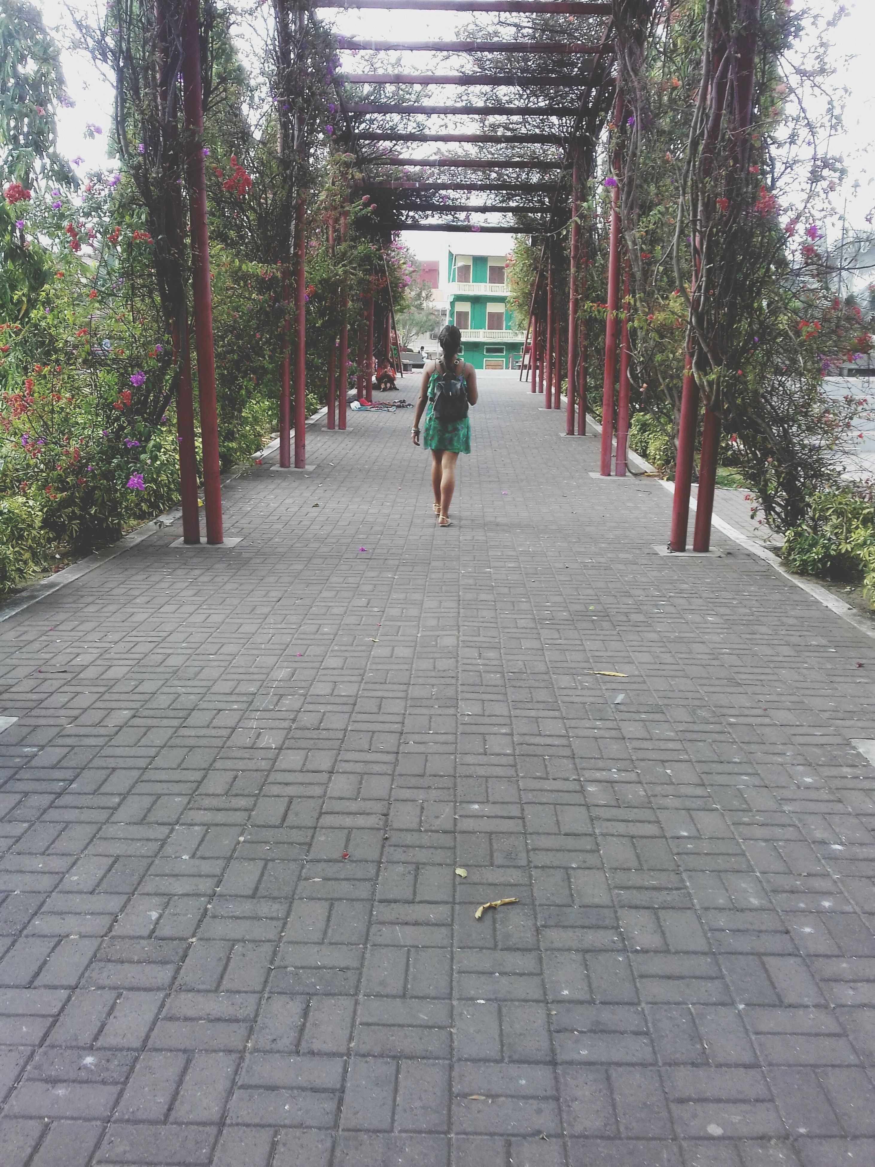 tree, lifestyles, the way forward, walking, rear view, full length, leisure activity, men, footpath, person, cobblestone, day, paving stone, park - man made space, sunlight, outdoors, walkway