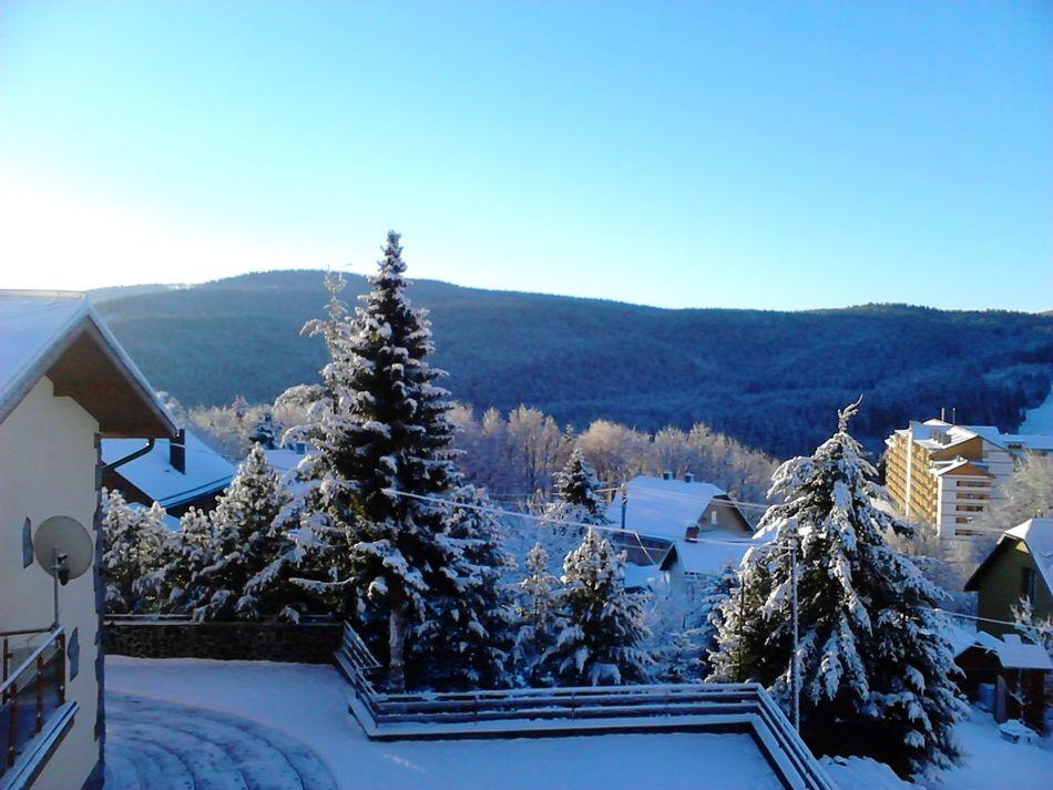 Winter Snow❄ Skiing Lyžák