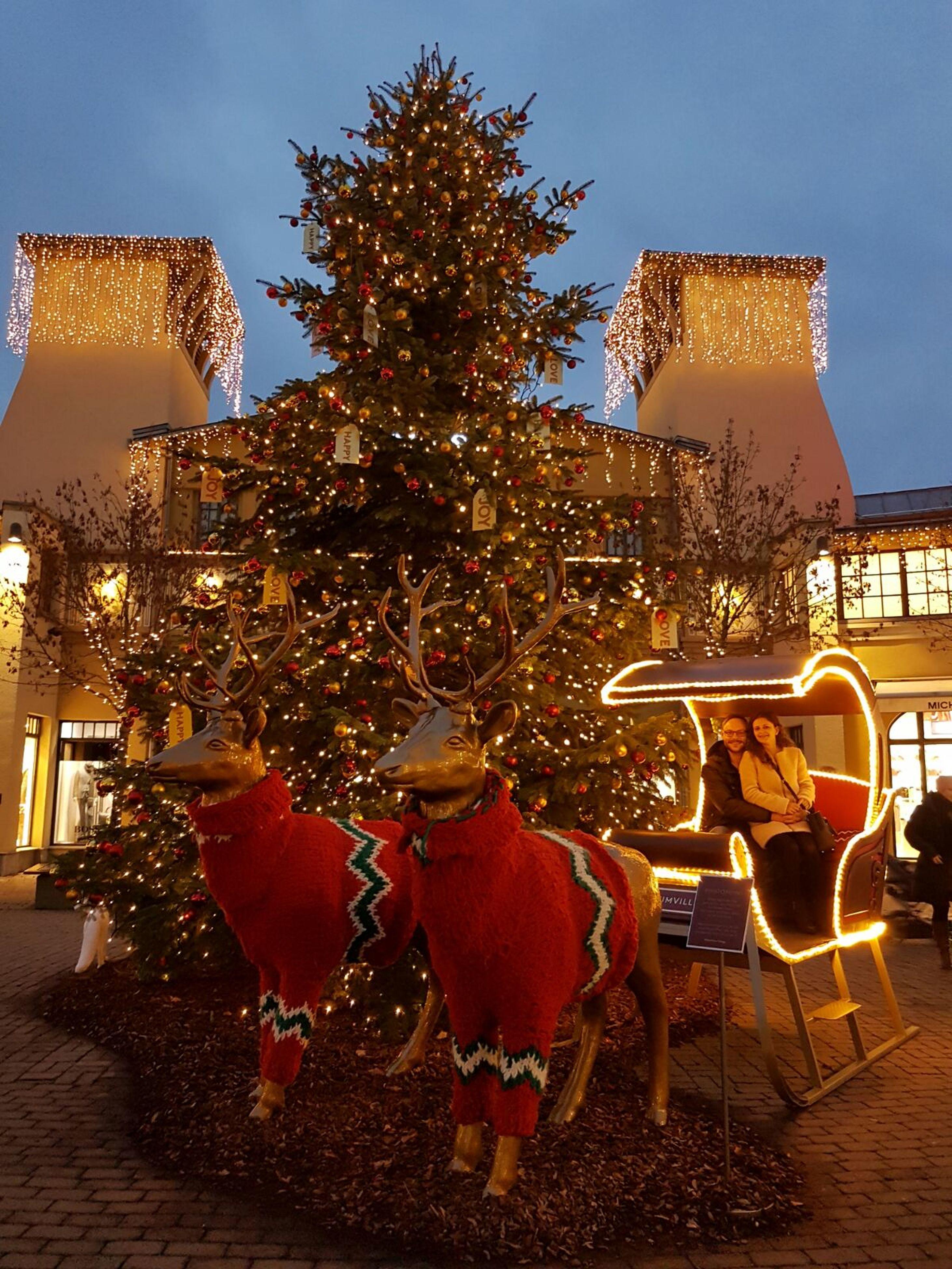 christmas, celebration, christmas tree, tree, christmas lights, christmas decoration, illuminated, tradition, holiday - event, christmas ornament, no people, sky, city, outdoors, architecture, christmas market