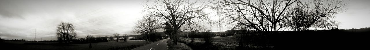 tree, bare tree, nature, sky, tranquility, no people, outdoors, day, road, landscape, scenics, panoramic, beauty in nature, cold temperature, grass, architecture