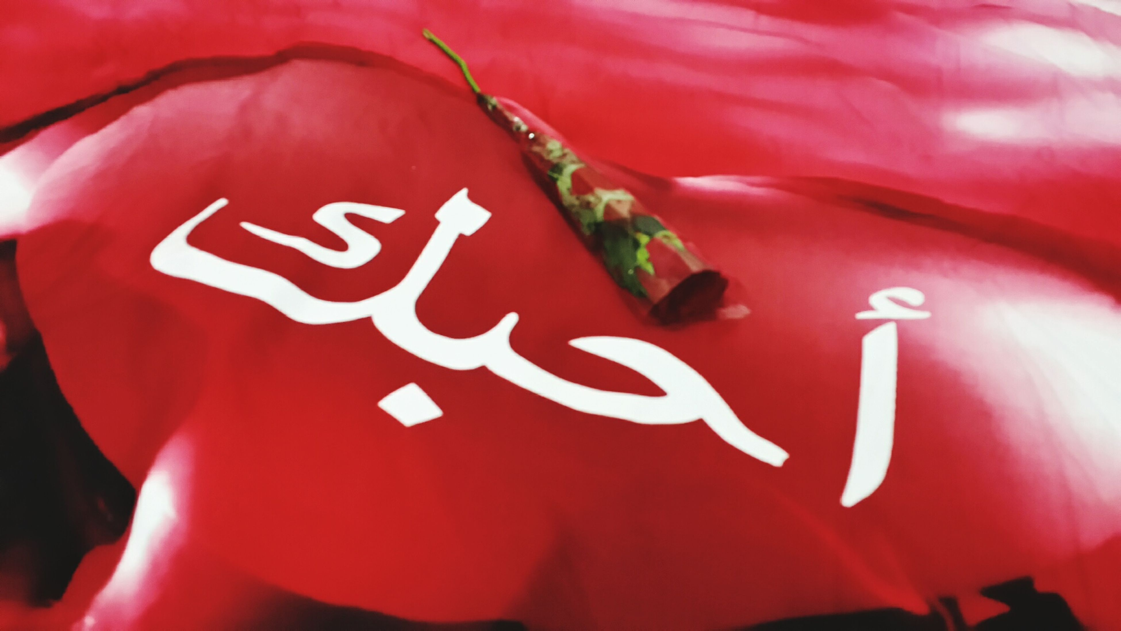 red, text, close-up, western script, communication, indoors, human representation, no people, creativity, day, focus on foreground, art and craft, white color, art, heart shape, backgrounds, detail, tradition