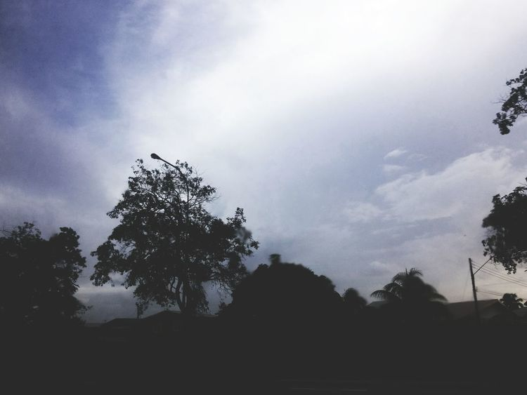 Tree Silhouette Tranquil Scene Sky Scenics Beauty In Nature Nature Growth Cloud - Sky Cloud Low Angle View Non-urban Scene Outdoors Cloudy Tranquility Solitude