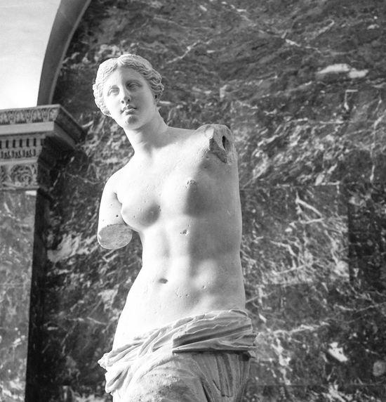Venus de Milo ArtWork Classic Marble Musée Du Louvre Sculpture Venus De Milo