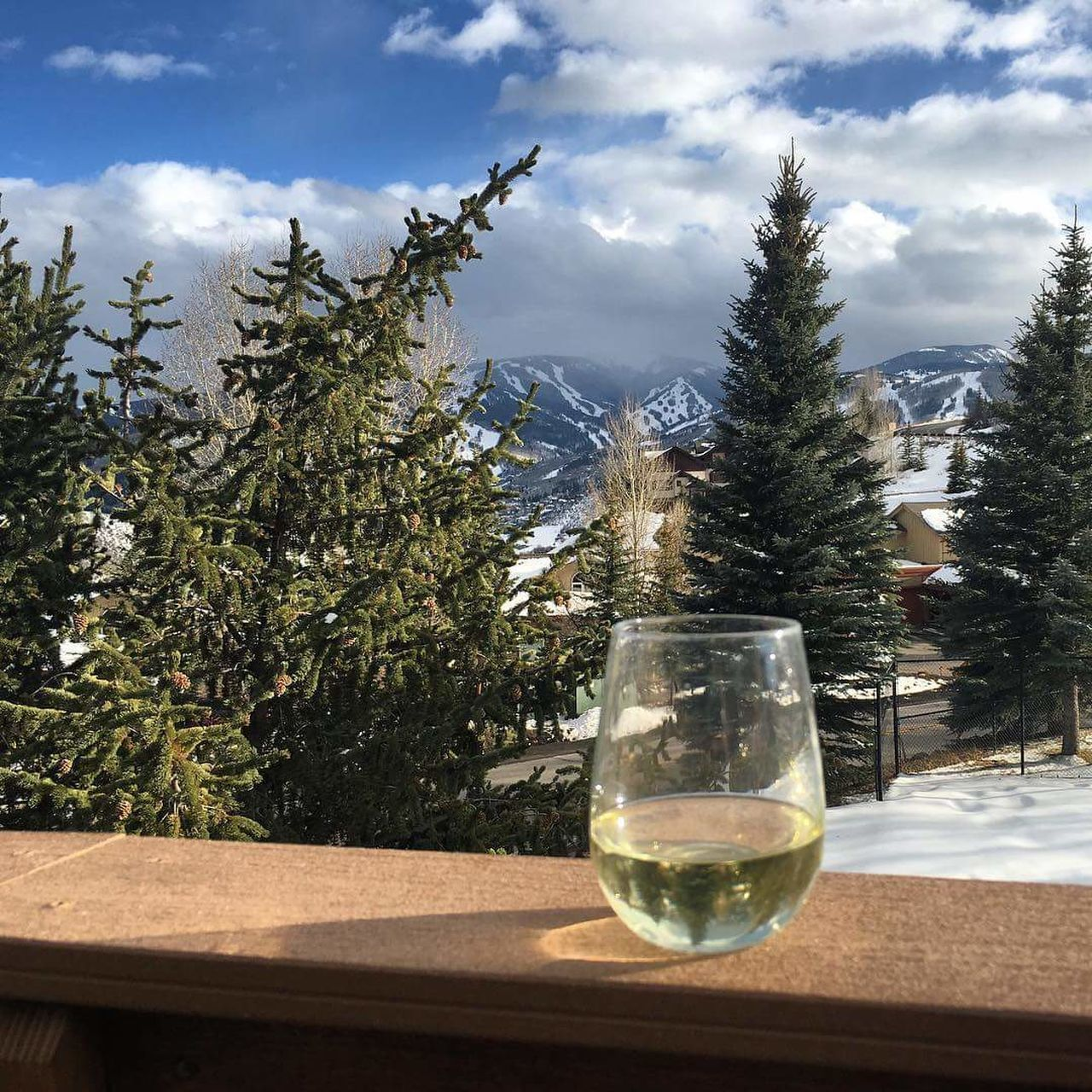 White Wine On Railing Against Trees And Snowcapped Mountains