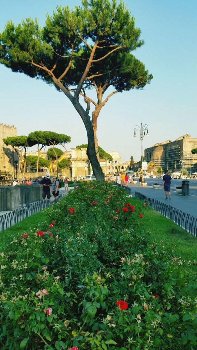 Check This Out Hellooo Eyem !  Naturelovers Rome