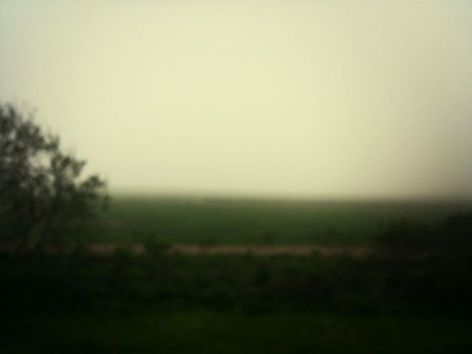 the fog always makes things blurry.
