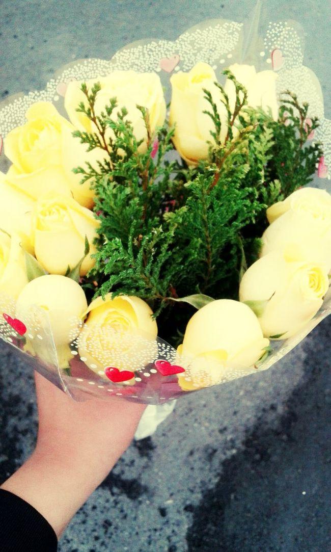 Flores Amillas Favorito Color♡