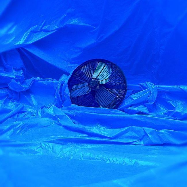 Blue Penique #CutOutFest Peniqueproductions Cutoutfest