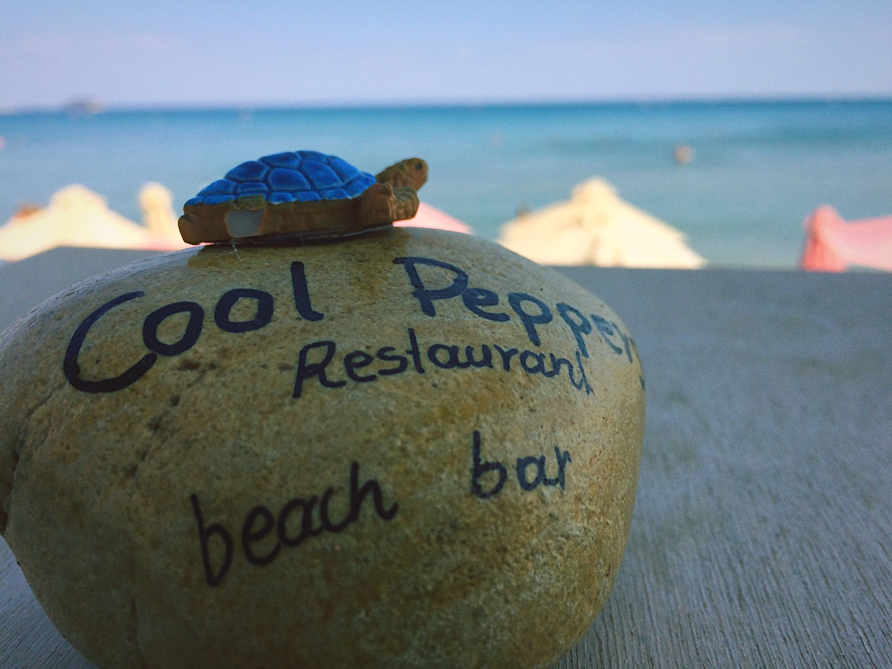 Promoting at it's finest. Cool Peppers Restaurant has great food, a spectacular view overlooking the sea, and awesome little stones with the name of the resturant on them, and a miniature turtle atop of them