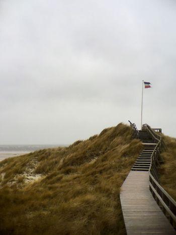 Storm Coast Dunes Flag Beach Amrum